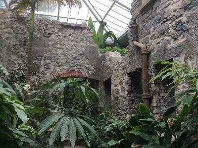Ninfarium Aberglasney Gardens
