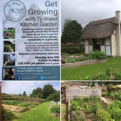 Organic garden Ty-Mawr