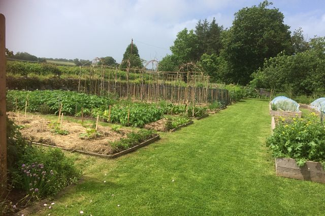 Ty-Mawr Kitchen Garden Brecon Beacons